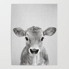 Calf - Black & White Poster
