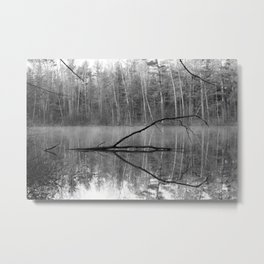 Black and White Reflections over Bluegill Bond Metal Print