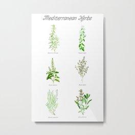 Mediterranean Herbs Metal Print
