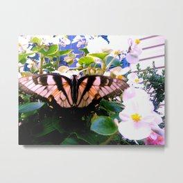 Summer;flies Metal Print