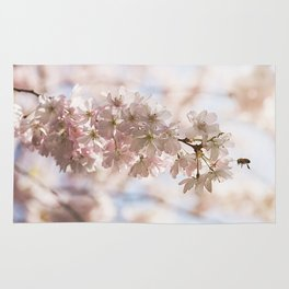 Bee and cherry branches against the blue sky Rug