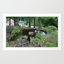 Tiny pond Art Print