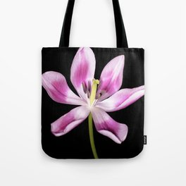 Open for spring Tote Bag
