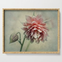 Pretty red columbine flower Serving Tray