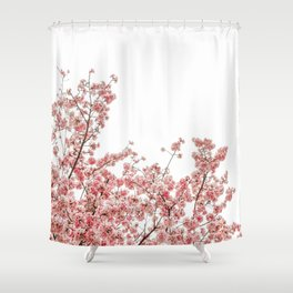 Cherry Blossoms (Color) Shower Curtain