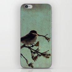 Lone bird iPhone & iPod Skin