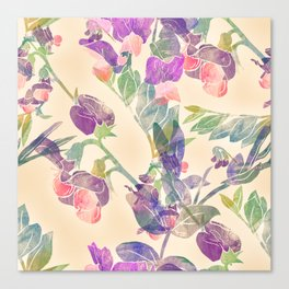 Flowers and leaves of garden vetch Canvas Print