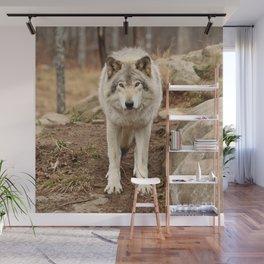 Woodland Wolf Wall Mural