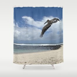 Pelican above the beach Shower Curtain