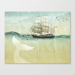 white tail, Moby Dick Canvas Print