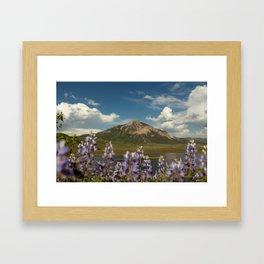 Mount Crested Butte through the Lupines  Framed Art Print