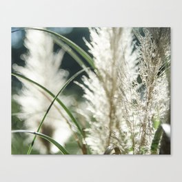 Dissolving in three stages Canvas Print