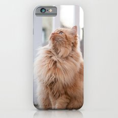 Here kitty iPhone 6s Slim Case