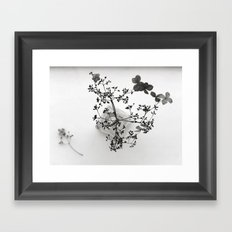 hydrangea in a vase Framed Art Print
