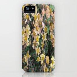 Lady Beetle  iPhone Case