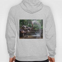 Elephant Bathing Hoody