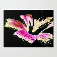 lily Canvas Prints featuring Lily by Vitta