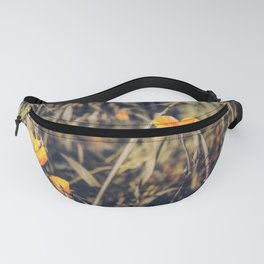 yellow poppy flowers with green leaves texture background Fanny Pack