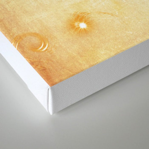 Quidditch Keeper Seeker Canvas Print