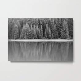 Forest Across the Lake (Black and White) Metal Print