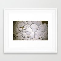 shell Framed Art Prints featuring Shell by CrookedHeart