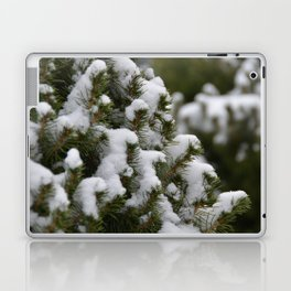 Snowy Cedar Tree Laptop & iPad Skin