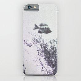 Vintage Fish iPhone Case