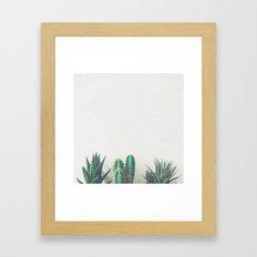 Cactus & Succulents II Framed Art Print