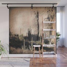 """Cactus Shadow"" by Murray Bolesta! Wall Mural"