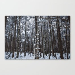 Appalachian Snowy Forest #1 Canvas Print