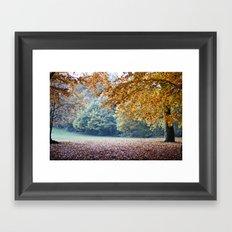 Secret autumn Framed Art Print