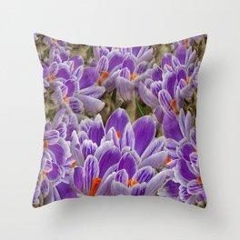 Striped Purple Crocuses Manipulated Throw Pillow