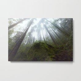 Moss Shroud  Metal Print