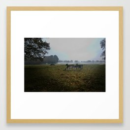 Phoneix Park Framed Art Print