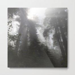 Lifting Fog Metal Print