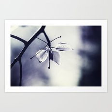 Spring Leaves in Black and White  Art Print