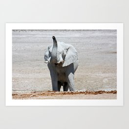 NAMIBIA ... Elephant fun III Art Print