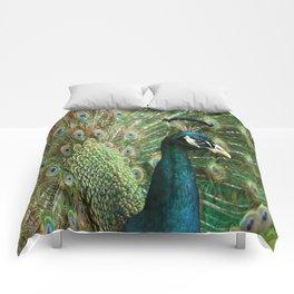 Peacock Portrait Comforters