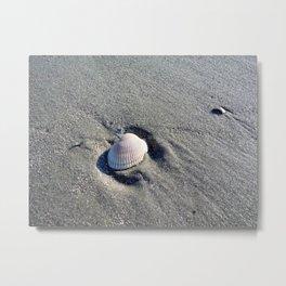 Washed Ashore Metal Print