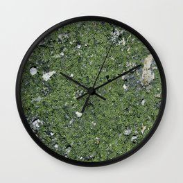 Life on a Rock at the Top of a Mountain Wall Clock