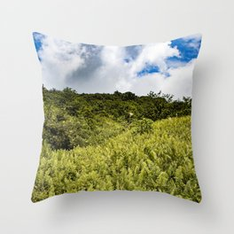 Beautiful Blue Sky Filled with Clouds of the Fern Covered Side of Mombacho Volcano, Nicaragua Throw Pillow