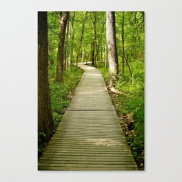 Forest Boardwalk Canvas Print