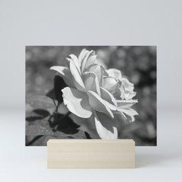 Single Simplicity Mini Art Print