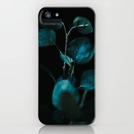 Eucalyptus Stem iPhone Case
