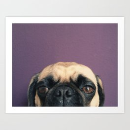 Lurking Pug Art Print