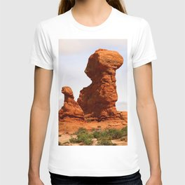 A Pictureque Rockformation T-shirt