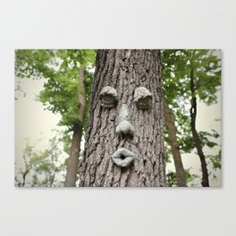The Tree is Watching Canvas Print