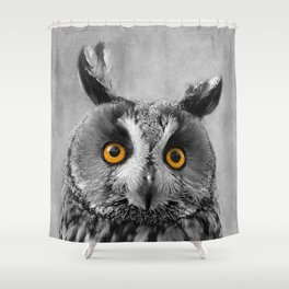Birds Of Prey. Long Eared Owl 2 Shower Curtain