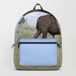 American Buffalo Backpack
