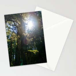 Light Through the Branches Stationery Cards